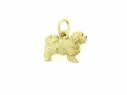 Maltese C427Y Puppy Cut/Rhodium E&N