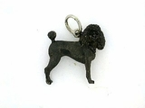 Poodle C082W Summer Cut/Rhodium Black & 7-Black D Collar (WG)