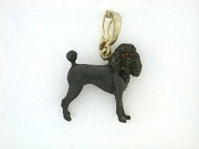 Poodle C082Y Summer Cut/Rhodium Black & 7-Black D Collar. Cognac D Eyes & Pearl Enhancer