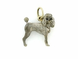 Poodle C082Y Summer Cut/Rhodium White