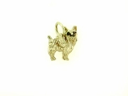 Yorkshire C543Y Terrier/Wings Rhodium E&N