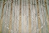 KRAVET COUTURE LEE JOFA MADEMOISELLE STRIPES SILK TAFFETA FABRIC SEAMIST