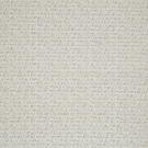 SAMPLE BEACON HILL EUROPA SOLID PLUSH CHENILLE UPHOLSTERY FABRIC TUSK