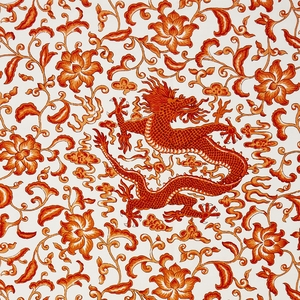 SCALAMADRE CHI'EN DRAGON LINEN PRINT FABRIC PERSIMMON