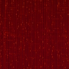 SCALAMANDRE GRAN CONDE UNITO CUT UNCUT VELVET SILK FABRIC RED