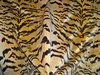 "SCALAMANDRE ""LE TIGRE"" SILK VELVET TIGER FABRIC"