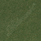 SCALAMANDRE SHAGREEN TEXTURE FABRIC GREEN