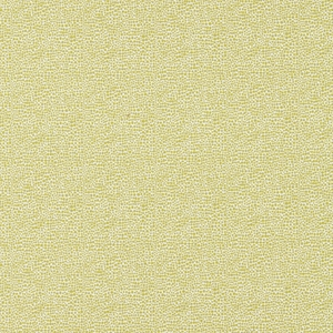 SCALAMANDRE SHAGREEN TEXTURE FABRIC SEAGRASS