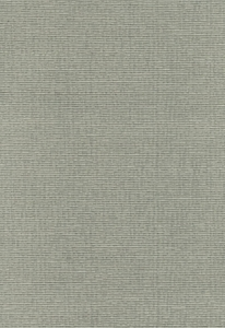 SCHUMACHER DELACROIX SILK OTTOMAN FABRIC NICKEL