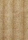 SCHUMACHER NAKURU ANIMAL SPOT VELVET FABRIC SAHARA