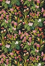 SCHUMACHER SEYCHELLES TROPICAL FABRIC NOIR MULTI