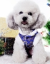 Fashion Pet Dog Clothes Chinese Style Tang Suit Winter Dress Blue