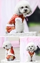 Fashion Pet Dog Clothes Chinese Style Tang Suit Winter Dress Red