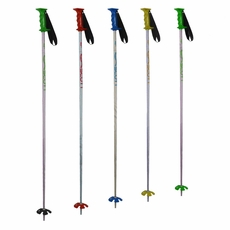 Used Scott Adult Rental Poles