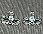 Sterling Silver Master Badge Earring Studs