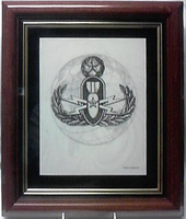 Framed Badge in Globe