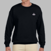 Crewneck Sweatshirt w/ Embroidered Badge
