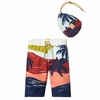Scotch Shrunk Artwork Board Shorts