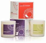 """9 Oz. Peppy - Sweet Pea, Jasmine & Apple - Jar Candle<br><font name=""""Arial"""" color=""""#C9CFC9""""size=2>"""