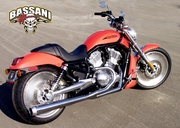 Bassani Road Rage 2 Into 1 for VROD (07-2016)