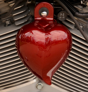 Heart Shaped Horn Cover in Custom Colors