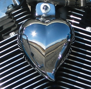Heart Shaped Horn Covers
