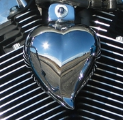 Show Chrome Heart Shaped Horn Cover