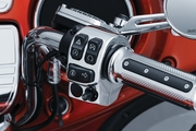 Switch Housings for '14-Current Touring & Trike, Chrome