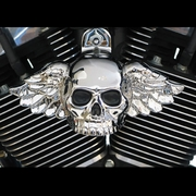 Winged Skull Horn Covers