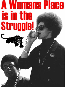 A Womens Place Is In The Struggle Black Panther Poster
