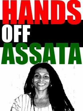 Hands Off Assata Poster