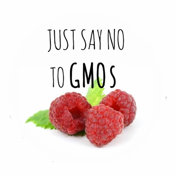 Just Say No To GMOs T-Shirt
