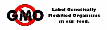 Label GMO's In Our Food Bumper Sticker