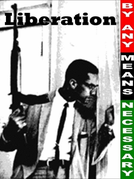 Malcolm X: By Any Means Necessary Poster