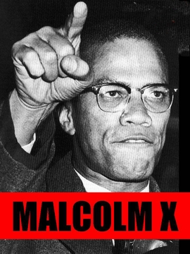 Malcolm X T-Shirts, Posters & Buttons