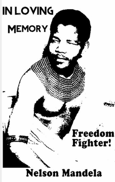 Nelson Mandela - Freedom Fighter Poster