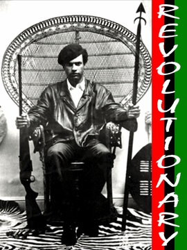Revolutionary: Huey P. Newton T-shirt