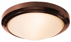 Access Oceanus 15.75 Outdoor Wall Sconce / Ceiling Light by 20356MG