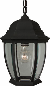 "Craftmade Bent Glass 14.5"" Outdoor Hanging Lighting Fixture - Black Z281-05"