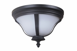 Craftmade Frances III Outdoor Ceiling Light Fixture Z6167-92-NRG
