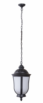 Craftmade Frances III Outdoor Hanging Lighting Z6161-92-NRG