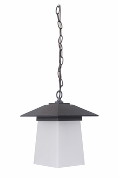 Craftmade Terrace Outdoor Pendant Light Z2011-14-NRG