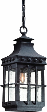Dover Natural Bronze Traditional Outdoor Hanging Light by Troy FCD8973NB