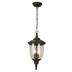 "Eglo Pinedale 21"" Outdoor Hanging Lamp - Bronze 202879A"