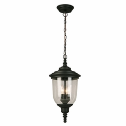 "Eglo Pinedale 21"" Outdoor Hanging Lighting - Black 202805A"