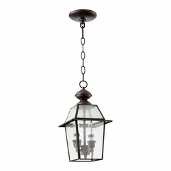 "Quorum Duvall 13"" Outdoor Pendant Lighting - Clear Seeded 728-2-136"