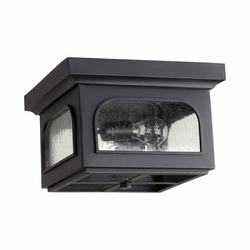 Quorum Fuller Exterior Ceiling Light - Noir 3603-13-69