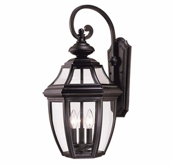 "Savoy House Endorado 25"" Exterior Wall Lighting - Black 5-493-BK"