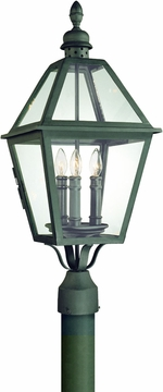 Townsend Traditional Outdoor Post Lighting Fixture by Troy P9625NB