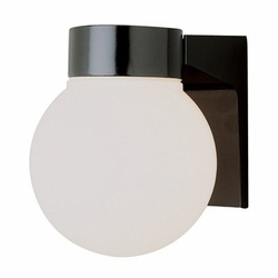Trans Globe Fluorescent Outdoor Wall Mounted Light - Contemporary PL-4800